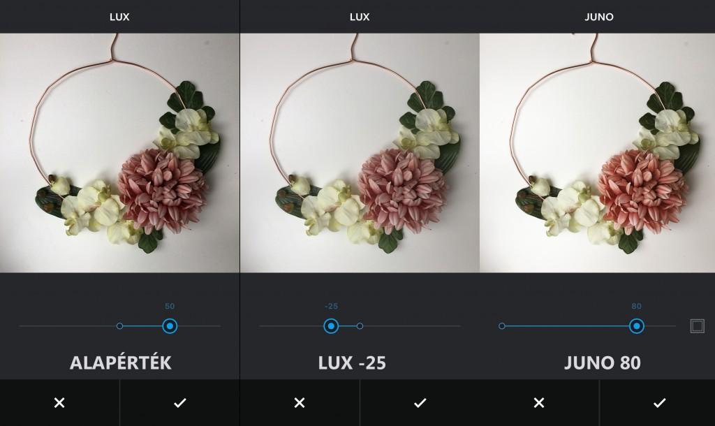 lux+juno