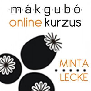 makgubo_kurzus_MINTA_LECKE_edited-1